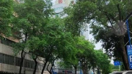 广东清远市街景随拍3