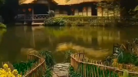 深山老林,鸟叫声音。 保护生态,环境优美。 #今日月潭#社会民生#社会时政