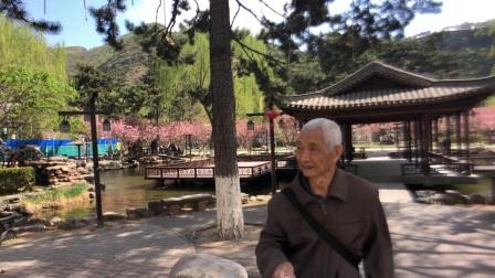 北京市龙庆峡水库里边的樱花