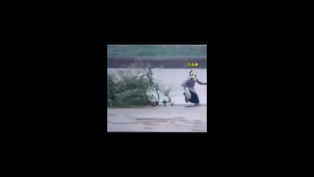 恶搞系列视频2