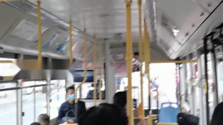 坐从雾凇路客运站到香山路的61路公交车