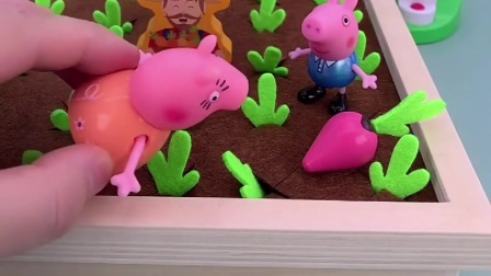乔治跟着妈妈到菜园子里摘菜,大萝卜都是爸爸妈妈的,乔治只能吃小萝卜