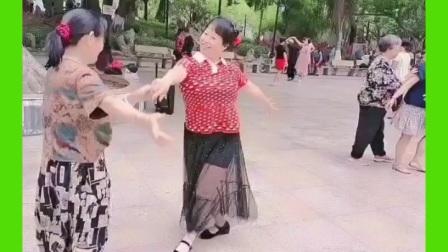 妙手杏林上传,交谊舞,伦巴