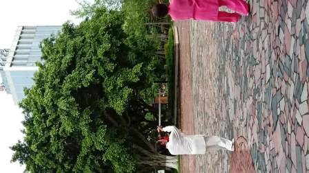杨式太极剑42式练习