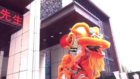 合肥本地舞狮队【150/5087/0889】合肥本地锣鼓队舞狮队、合肥开业庆典舞狮舞龙梅花桩舞狮表演
