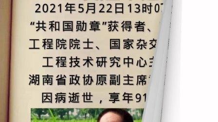 痛别(杂交水稻之父)袁隆平逝世