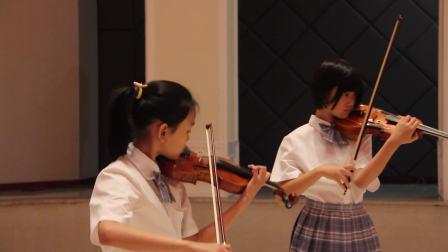 花儿为什么这样红  小提琴齐奏金奖——高效弦琴中心.mpg