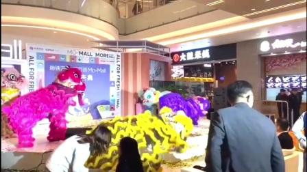 徐州舞狮表演【150/5087/0889】徐州舞狮舞龙锣鼓队、徐州梅花桩舞狮表演预定中