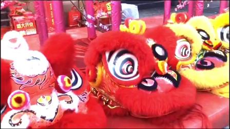 扬州舞狮舞龙锣鼓队【150/5087/0889】瞿团VX---扬州武昌舞狮队、扬州锣鼓队、扬州军乐队、扬州梅花桩舞狮表演