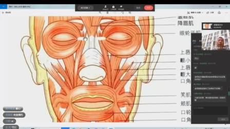 第二课针刀在美容塑体方面的诊疗思路与方法