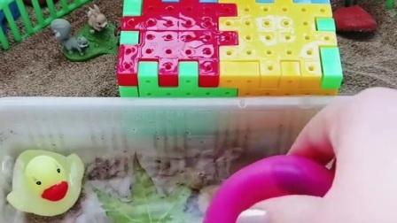 蘑菇炮把盆里的水都吸干了,感觉吸的太饱了,有点撑不住了