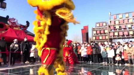 扬州舞狮表演【150/5087/0889】扬州舞狮锣鼓队舞龙