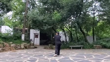 太极拳松活弹抖