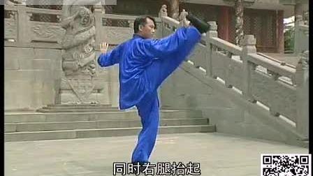 孙式传统太极拳98势     李斌