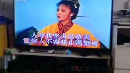 黄梅戏大乔小乔(哭战袍)