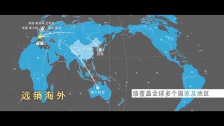 短视频6月推广-WST抖音宣传视频
