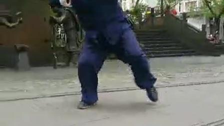 #陈氏太极拳#当代四川省太极拳名家陈氏太极拳第十二代传承人乔星瑞先生的太极拳演练。