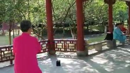 妈妈晨练太极