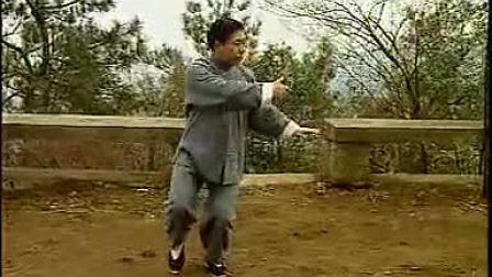 传统杨氏太极拳85势傅清泉