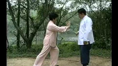 傅清泉嫡传杨式太极拳教练法