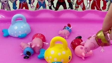 小猪一家来洗澡了,这么来了这么多猪妈妈呀