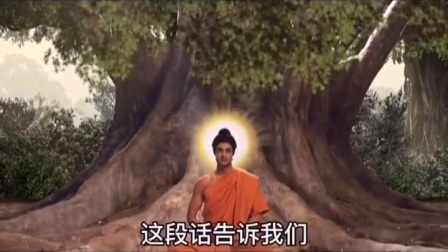 释迦牟尼菩提树下悟到了什么