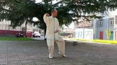滕德顺改编 陈式混元十七式
