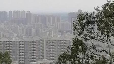 站在塘山岭看廉江市。黄家桉旅游