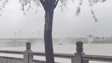 石川河国家湿地景区!2021.10.06