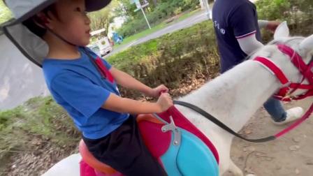 六六成长日记:第一次骑马。东方绿舟20211006