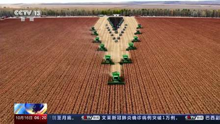 黑龙江垦区15万亩高粱迎来丰收
