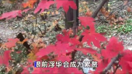 游龙首山赏秋天红叶