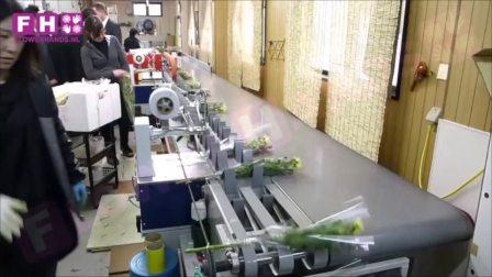 混合花束处理线 T4100 日本现场