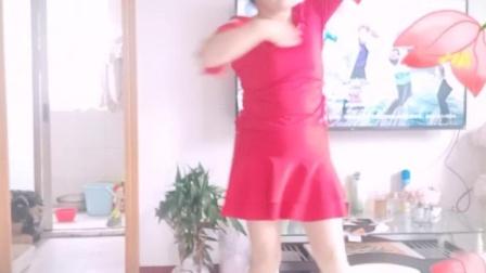 彩虹丹广场舞 爱上一朵花 柔美美舞竖屏版