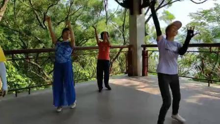 东湖公园里会朋友交流舞蹈