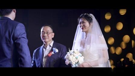 ZJX&WQ Wedding highlights