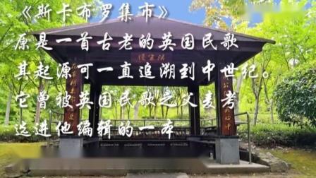 欣赏上海浦兴公园风光《斯卡布罗集市》英国民歌 浦金快乐之声