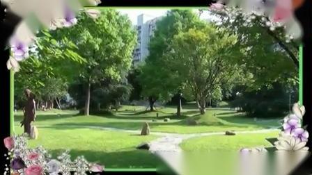古稀老福葫芦丝演奏《春到草原》_土豆视频1.mp4