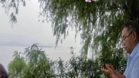 夏日漫步雪野湖.