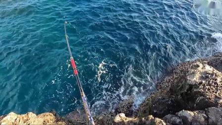 (矶钓) 岸矶最后一天 挑战大型黑毛鱼