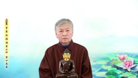 劉素雲老師 - 無量壽經 複講 第二回 第15集