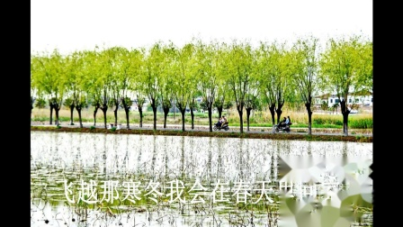 《摘一朵春天带回家》金明词,陈丽君曲,方鹂鹂演唱,曾敏摄影.mpg