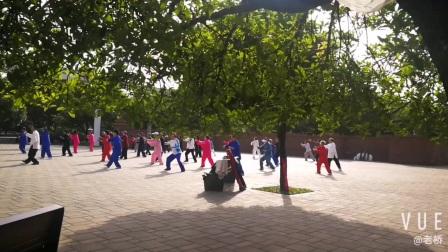 辛丑五一西安曲江集体太极健身片段(20210501)刀郎的雁南飞歌曲伴奏