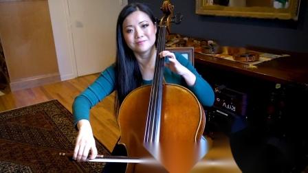 你能分辨出5000美元18万美元和100万美元这三款大提琴的区别吗?