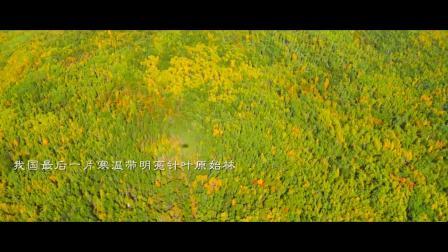 大兴安岭旅游宣传片 (莫尔道嘎)2