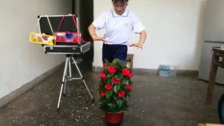 神奇的花盆