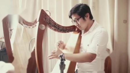 广州诗蕴26弦凯尔特小竖琴