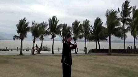 薛文宇十三势视频