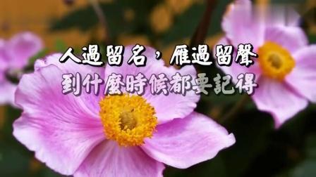 佛教教育片《人在做 天在看》