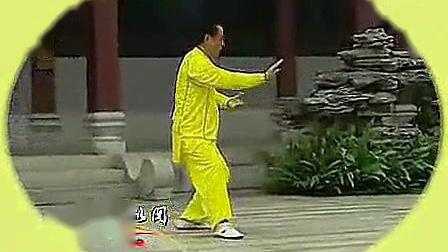 我在段位制杨式太极拳四段单练套路_标清截取了一段小视频